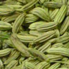 fennel-seeds (100x100, 6Kb)