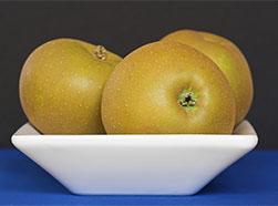 Яблоки (251x186, 22Kb)