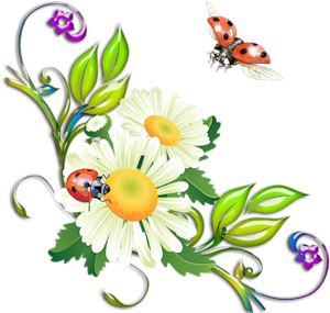 http://img1.liveinternet.ru/images/attach/c/5/86/110/86110343_0_5cf56_eafc23e_M.png