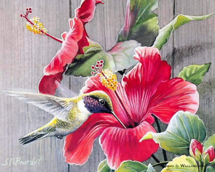 Картинки с птицами и цветами 3