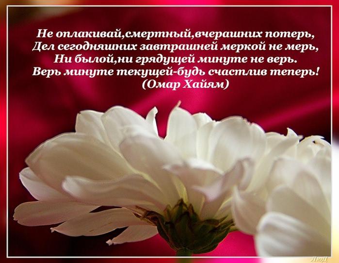 Поздравления с днем рождения женщине мудрости