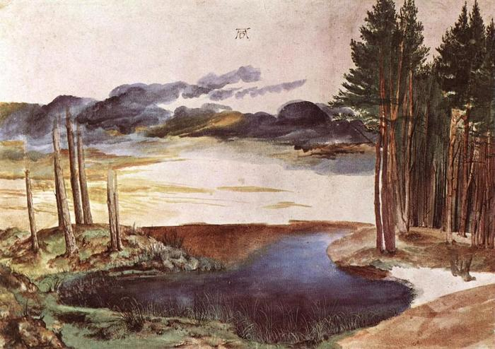 Дюрер - Pond in the Woods (c. 1496) (700x494, 69Kb)
