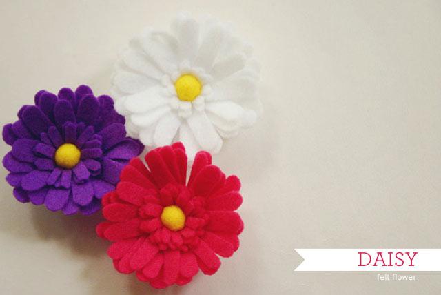 4153689_daisyflower01 (640x428, 34Kb)