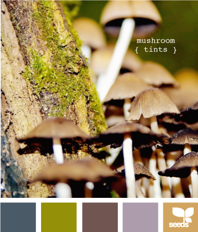 MushroomTints610 (400x469, 297Kb)