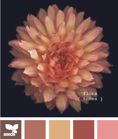 FloraTones600_1 (400x474, 168Kb)