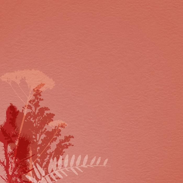 HeatherT-OrganicAddOn-Paper1 (700x700, 310Kb)