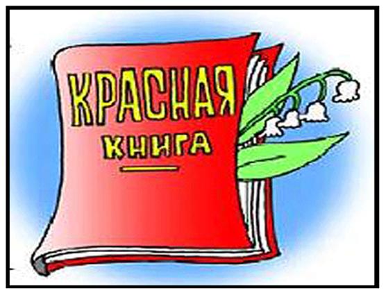 Презентация Красная Книга Липецкой Области 3 Класс