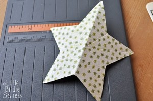 cstar3-300x199 (300x199, 20Kb)