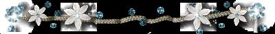 1661266_0_817ac_7fd663cb_L (400x50, 36Kb)