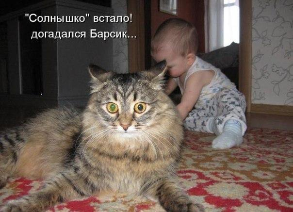 кот  и ребенок (604x437, 57Kb)