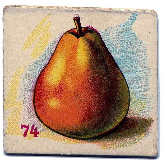 fruit-card-pear-vintage-graphicsfairy009 (700x696, 179Kb)