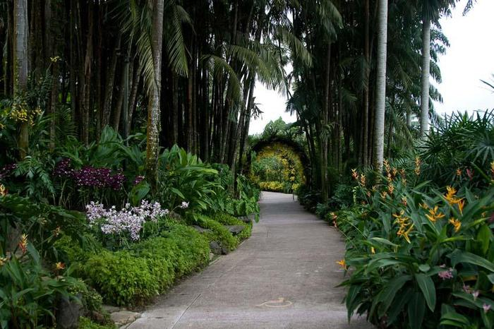 Orchid_Garden_25 (700x466, 75Kb)
