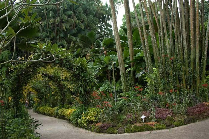 http://img1.liveinternet.ru/images/attach/c/5/86/315/86315975_Orchid_Garden_23.jpg