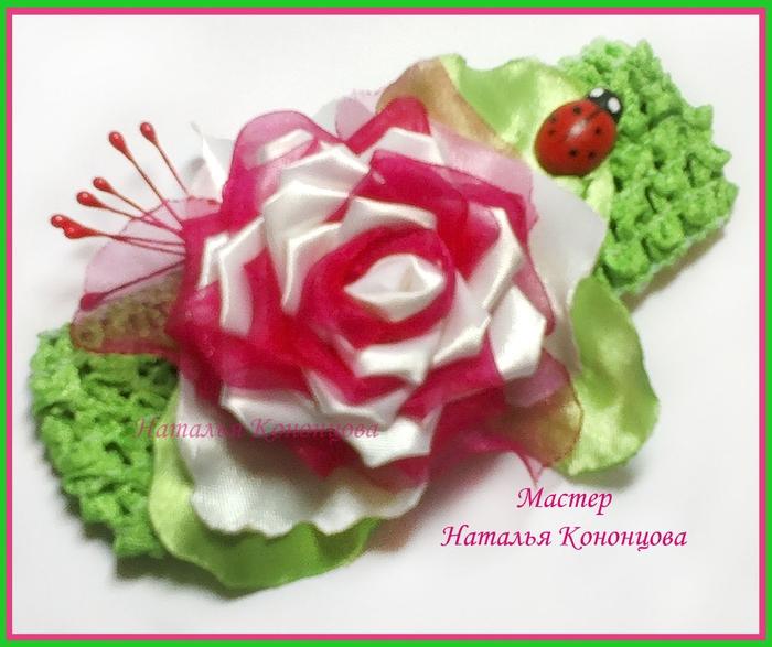 Малиновая роза (700x587, 261Kb)