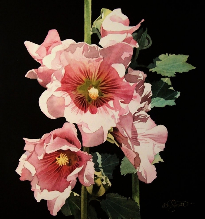 4430707_Hollyhock_Garden (655x700, 240Kb)