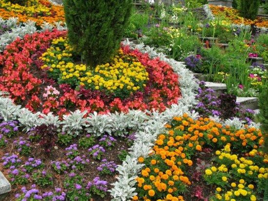 """Формирование клумбы беспрерывного цветения - занятие очень увлекательное, которое многие называют  """"рисованием..."""