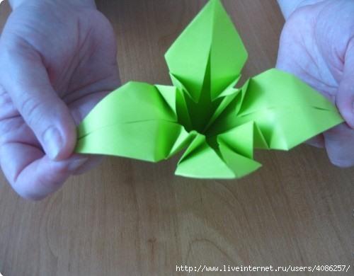 Схема сборки лилии для шара кусудамы для начинающих.  Мастер класс.