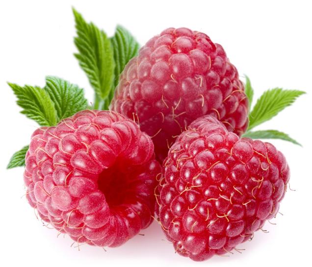 1284376288_raspberry (636x545, 137Kb)