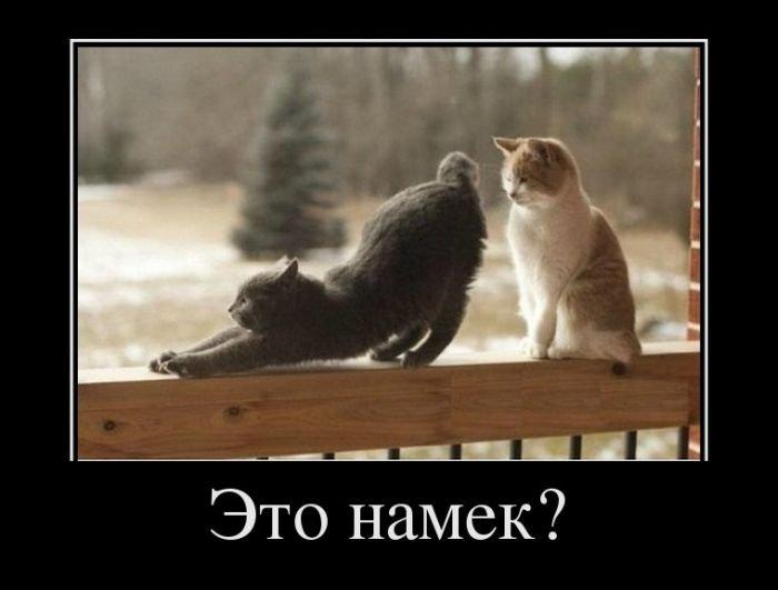 demotivatory_na_ponedelnik_32_foto_1 (700x531, 37Kb)