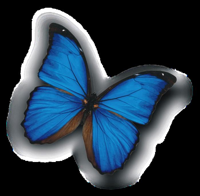 1664525_Morfa_avatar (700x686, 420Kb)