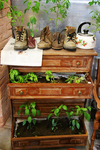 ������ Recycled-chest-of-drawers-boots-kettle_rect540 (360x540, 278Kb)
