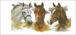 Превью Three Horses (700x329, 88Kb)