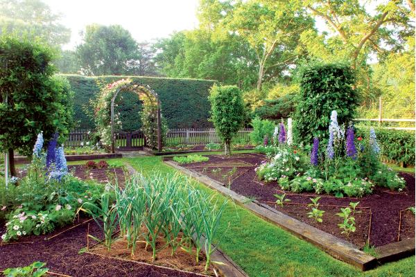 Сад и огород дизайн своими руками