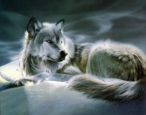 6_wolf (300x235, 30Kb)