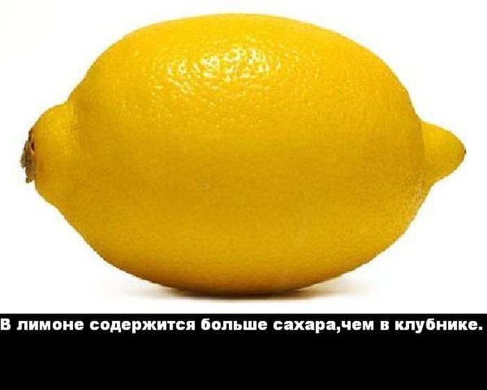 interesnye_fakty_43_foto_5 (700x560, 39Kb)