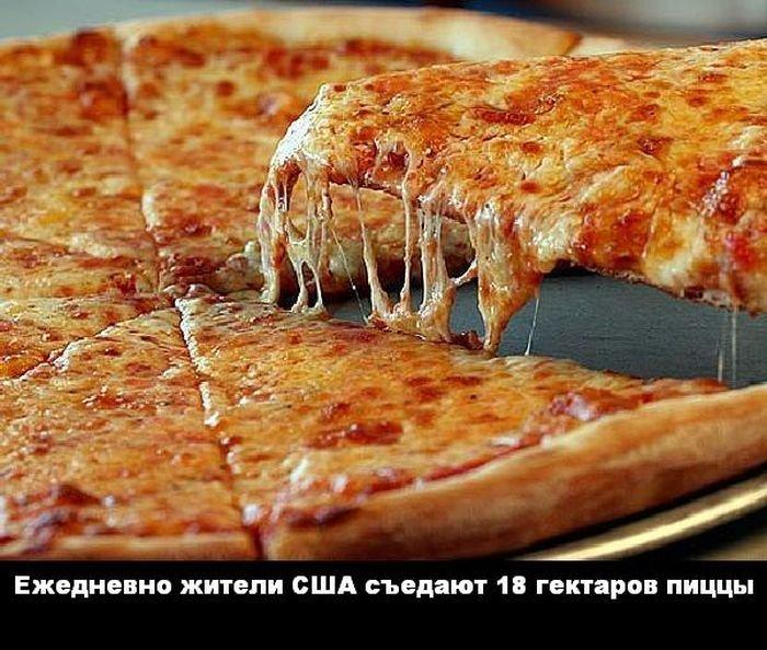 interesnye_fakty_43_foto_24 (700x594, 98Kb)