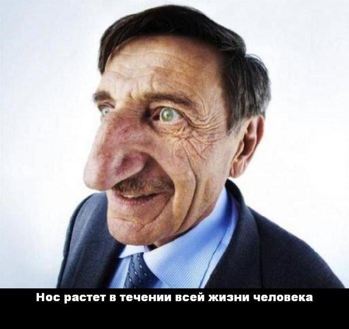 interesnye_fakty_43_foto_25 (700x660, 51Kb)