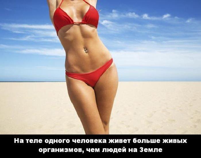 interesnye_fakty_43_foto_28 (700x548, 43Kb)