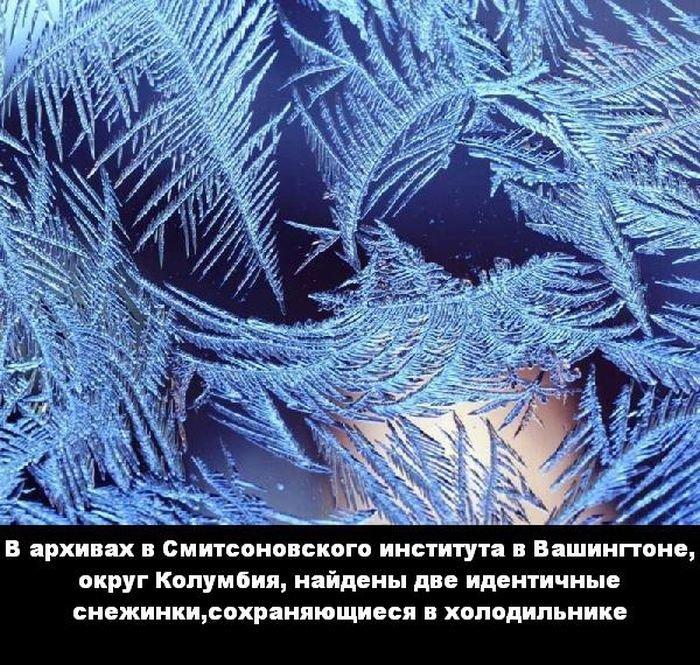 interesnye_fakty_43_foto_33 (700x665, 167Kb)