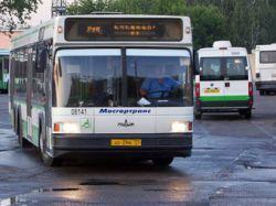 автобус (250x187, 12Kb)