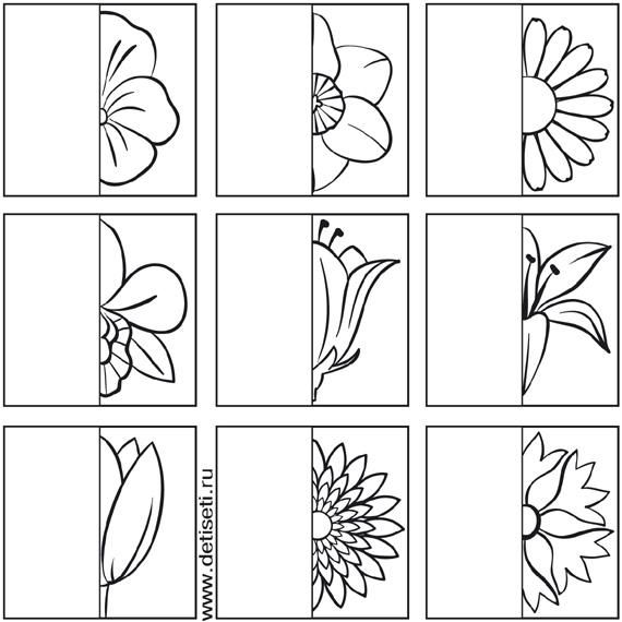 cvety (570x570, 89Kb)