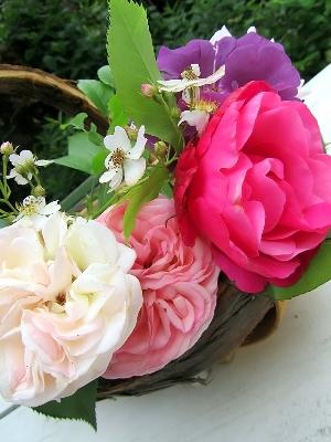 цветы 18 а (300x400, 95Kb)