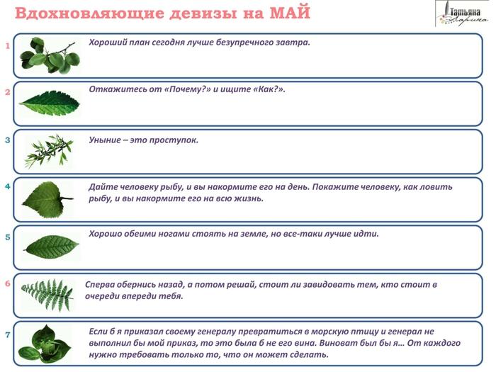 4621511_Vdohnovlyaushie_devizi_na_MAI1 (700x525, 167Kb)
