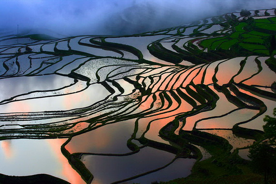 рисовые террасы5 (570x380, 124Kb)