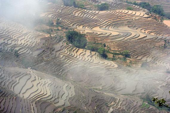 рисовые террасы18 (570x380, 135Kb)