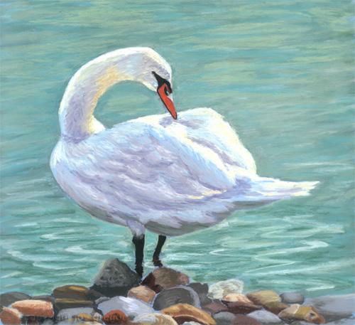 swan (500x457, 92Kb)