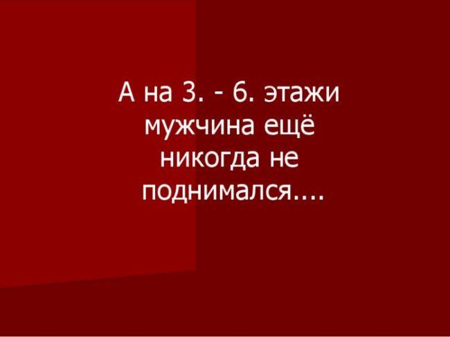 1328164572_shop_16 (650x488, 17Kb)