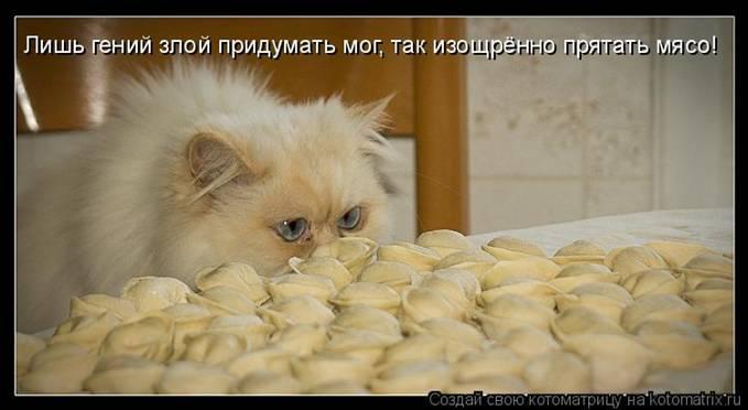 http://img1.liveinternet.ru/images/attach/c/5/86/693/86693401_large_17.jpg