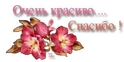 Картинки по запросу Светлана ямолкина картинки