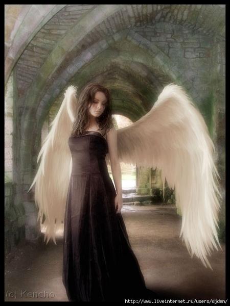 1362904_25942374_5028448_2789300_Wandering_Angel_by_Kencho (450x600, 163Kb)