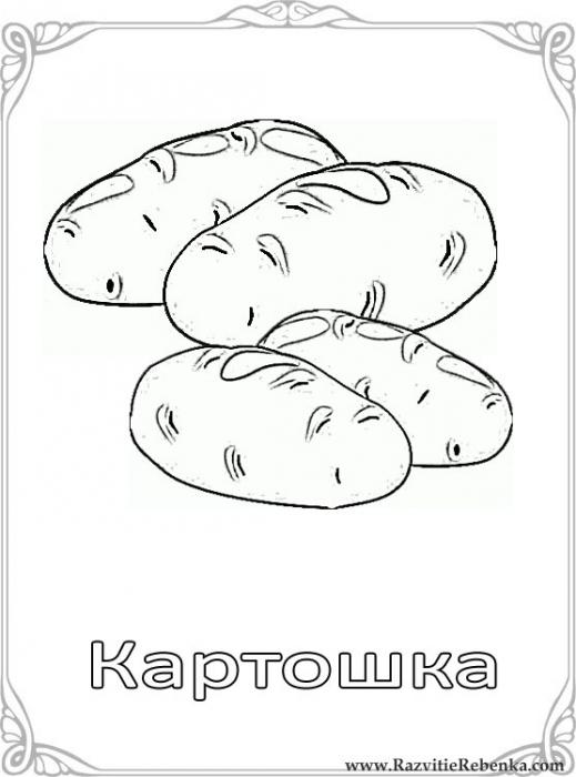 4518653_kartoshka (519x700, 137Kb)