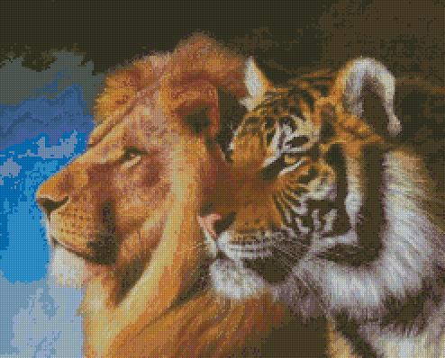 Lion and Tiger (494x398,