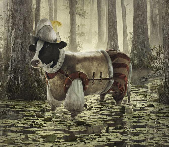 смешные коровы фото 3 (670x585, 119Kb)