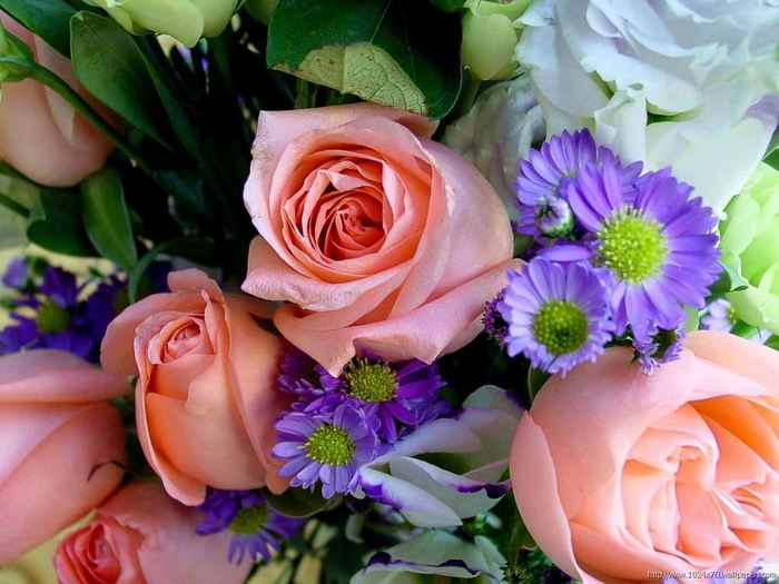 84468515_large_643752_flowers_1024x768_wallpaper_9 (700x525, 67Kb)