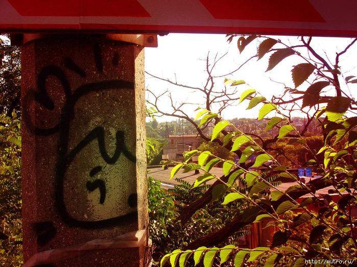 сумасшедший одесский художник граффитист Саша Рис Мунтян