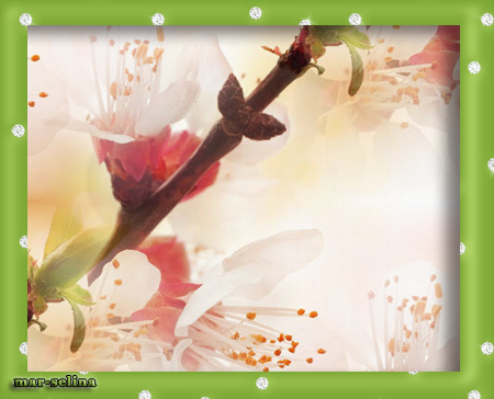 цветущая-ветка (450x364, 180Kb)
